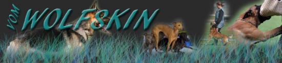 Sabrinas Hundesport 'vom WOLFSKIN'